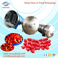 High capacity strawberry industrial freeze drying machine