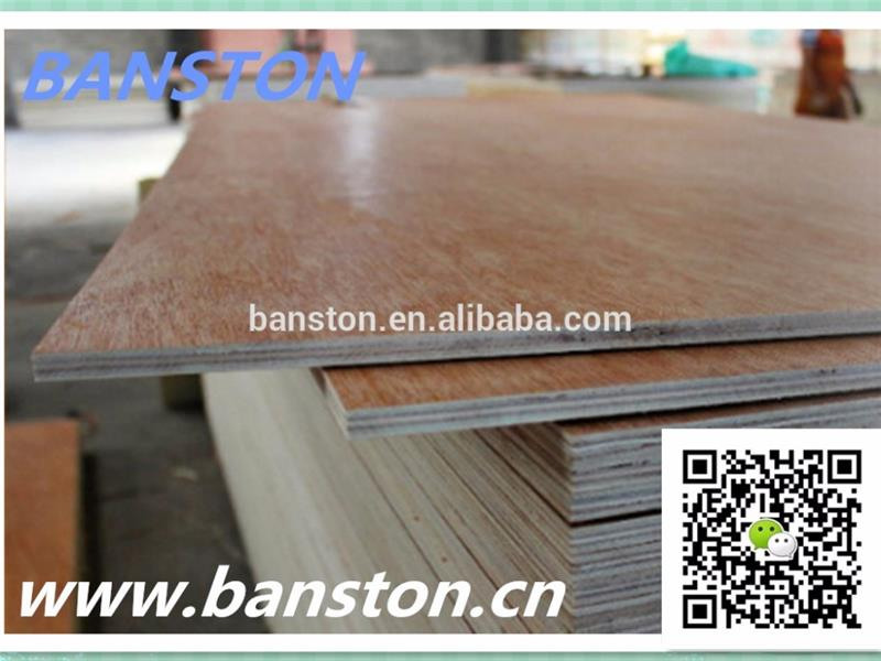 Competitive price plywood miri sarawak for Europe market
