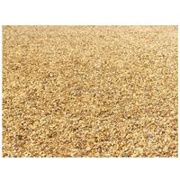 Golden Cheap Chinese Gravels/Gravel Stone
