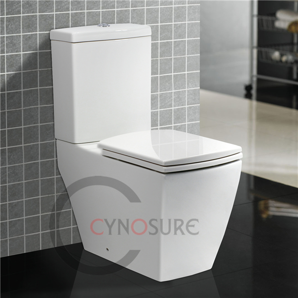 CY2092C Washdown Two Piece Toilet