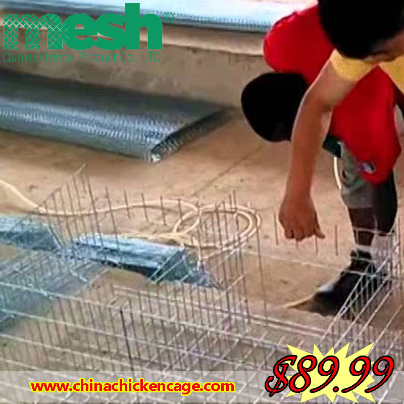 jaula de pollo/batteries cage for chickens/cages laying hens