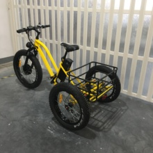48V 3 wheel electric bike closed tricycle with LCD panel