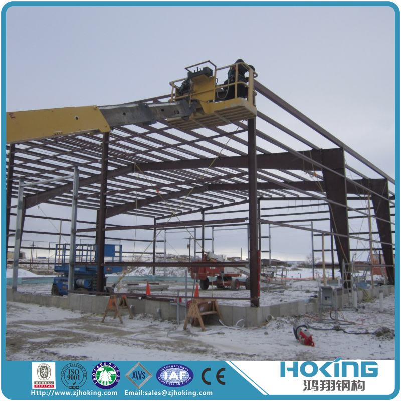 Cheap Well Designed Steel Structure House Factory Building for Sale