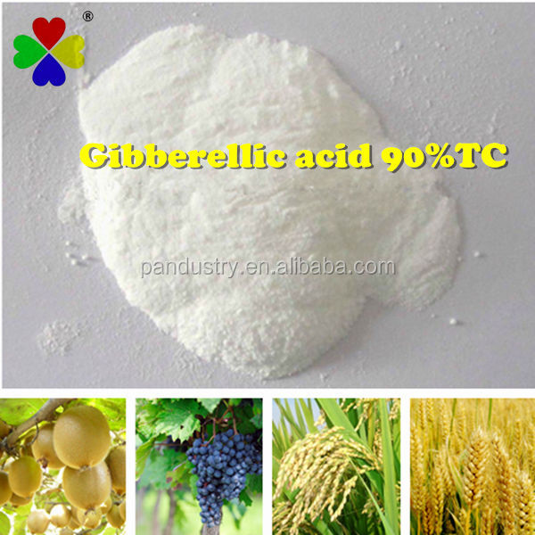 Hot sale Bio PGR 90%TC Best prices GA3 Gibberellic acid