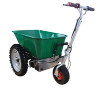 electric dumper tricycle