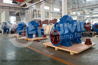 Large Capacity high performance farm irrigation water pump