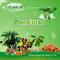 100% Pure Natural Bilberry Extract