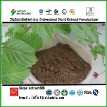 Factory supply Instant Grass Jelly Powder /Mesona Chinensis powder