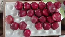 apple Fruit Product Type fresh top red huaniu apples
