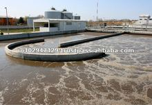 Bacteria for bewerage wastewater treatment