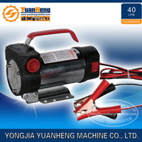 Portable Self Priming DC 12 Volt Diesel Transfer Pump