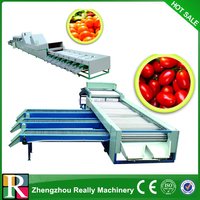 Automatic Fruit Vegetable Sorting and Grading Machine