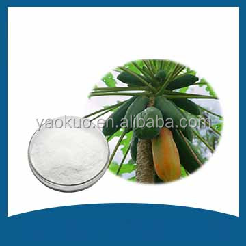 Papain Bromelain ,Manufacturer Supply High Quality Papain Enzyme