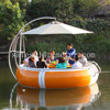 Amusement park pedal boat with electric motor