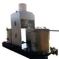 Hot Sale Cold Press Automatic Olive Oil Extraction Machine Hydraulic Oil Press Machine for Walnut/Almond/Sesame