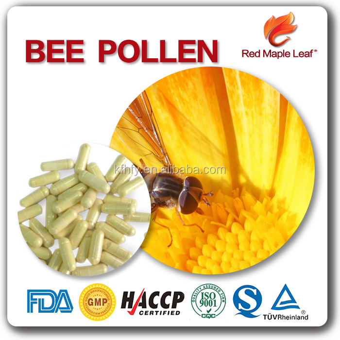 Nutrition supplements OEM and Private Label Hard Gelatin Capsules Bee Pollen Capsules