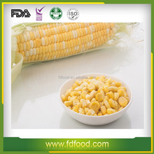 Best Tasting and Top quality bulk Freeze dried sweet corn frozen dried vegetable