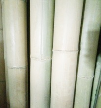 HL Competitive price Moso bamboo poles for farm