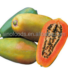 red lady papaya seeds mu gua zhong zi 100% papaya seeds