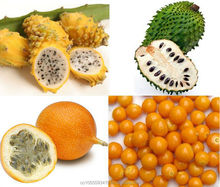 COLOMBIAN TROPICAL / EXOTIC FRUIT