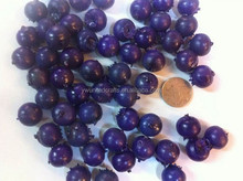 The real size 1:1,artificial blueberry for home decoration