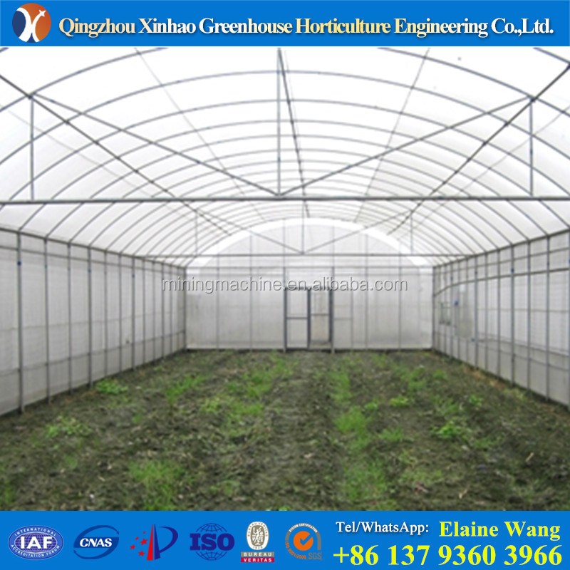 greenhouses structure with gully hydroponics system