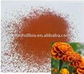 Marigold Extract 5%~10%,90% Lutein by HPLC