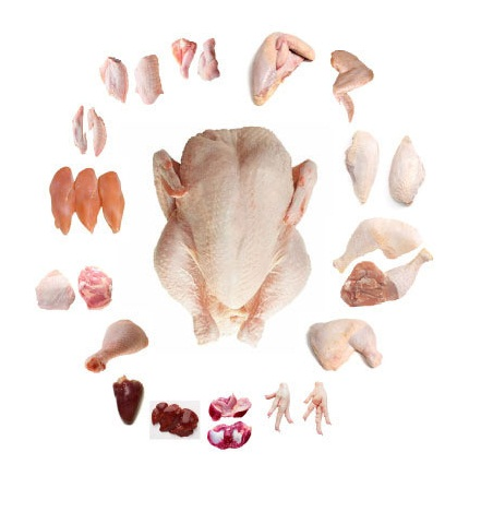 FROZEN CHICKEN / FROZEN POULTRY PARTS THIGHS/WINGS/FEET