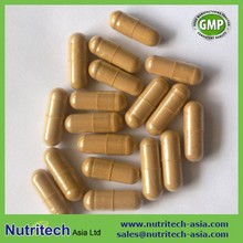 GMP certified Cordyceps sinensis extract capsules oem
