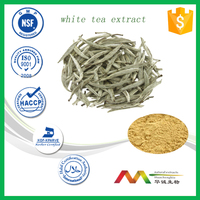 Best selling pure natural White Tea Extract