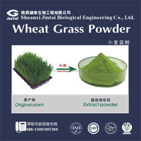 herbal extract type Organic wheat grass juice powder
