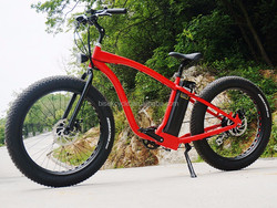 eec electric pit bike fat tire surrey bike electric for men