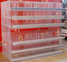 Certificated excellent Quail layer cages for sale