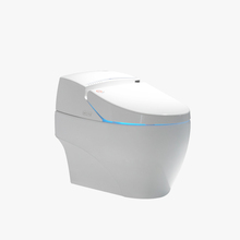 Handicapped Convenient Toilet Automatic Disabled Smart Toilet