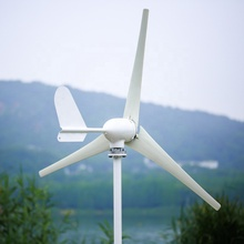 small <strong>500w</strong> <strong>Wind</strong> <strong>Turbine</strong> With Controller Available