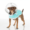 doggy safe raincoats