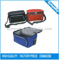 2013 Customized Aluminum Foil Bottle non woven Cooler Bag