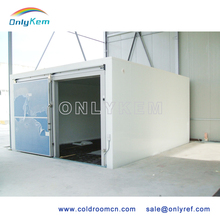 Customizable cold storage/pharmaceutical cold room