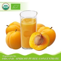 NOP EU Certified Organic Apricot puree concentrate
