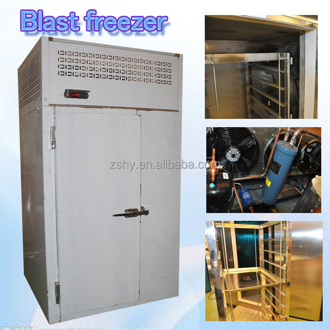 Small capacity low temperature blast freezer with one trolley