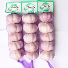 New Garlic Rate in Jinxiang, Red Garlic/Purple Garlic