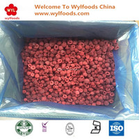 China in bulk Iqf Organic Frozen Raspberry