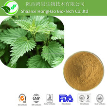 100% Natural Pure Nettle Leaf P.E/ Nettle Leaf Extract