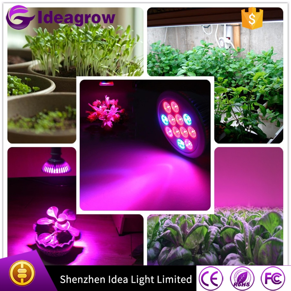 Agricultural Greenhouse par38 led grow light e27 12w <strong>bulbs</strong> for plants Strawberry peas lettuce