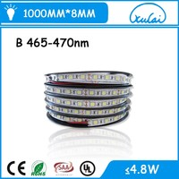 Amazing Price rgb/white/warm white dimmable SMD 5050 led strips light