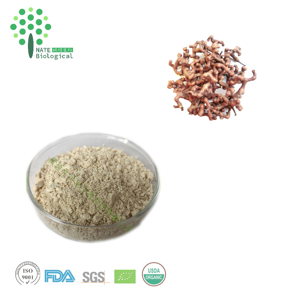 Liver Protection hovenia dulcis fruit extract powder 98% DHM Dihydromyricetin