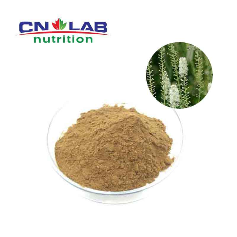 hot selling 10:1 natural black cohosh P.E. Cimicifuga Racemosa (Ranunculaceae) powder