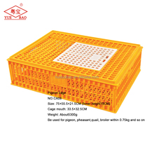 Folding transport crate bird use plastic pigeon cage for sale