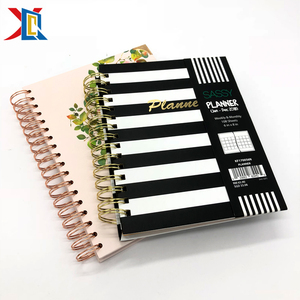 Custom 2018 2019 A5 A4 6 Ring Binder Spiral Bound 2 Year Planner with dividers