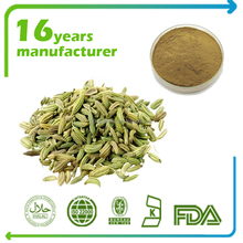 Factory Supplier Fennel Seeds Extract Extract 10:1 HPTLC for health care product
